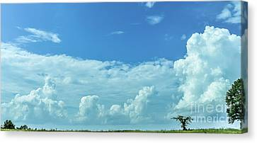 Canvas Print featuring the photograph Countryside by Andrea Anderegg
