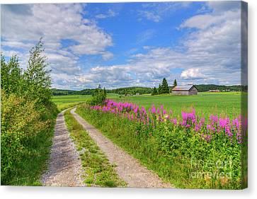 Countryside In Finland Canvas Print by Veikko Suikkanen