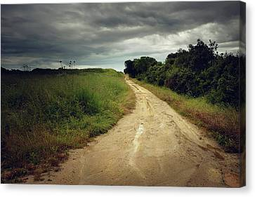 Countryside Trail Canvas Print