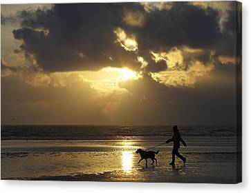 County Meath, Ireland Girl Walking Dog Canvas Print by Peter McCabe