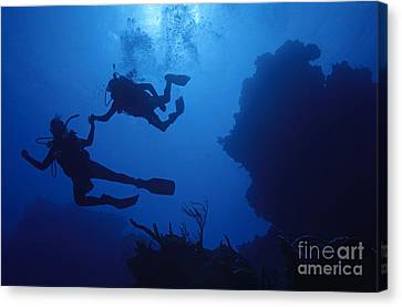 Couple Of Divers Holding Hands Canvas Print by Sami Sarkis