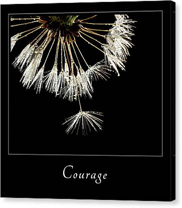 Canvas Print featuring the photograph Courage 3 by Mary Jo Allen