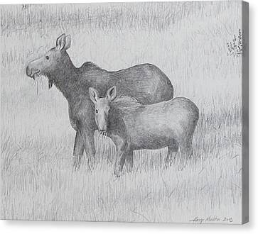 Cow And Calf Moose  Canvas Print