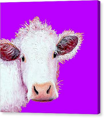 Farm Animal Canvas Print - Cow Art - Charolais On Purple by Jan Matson