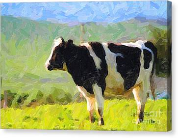 Cow On A Hill Canvas Print by Wingsdomain Art and Photography