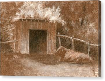 Cow Shed Canvas Print by David King