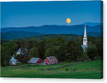 Steeple Canvas Print - Cow Under The Moon by Michael Blanchette