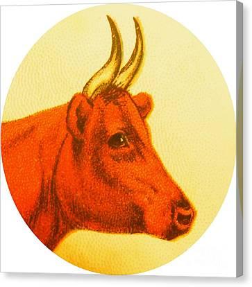 Fed Canvas Print - Cow V by Desiree Warren