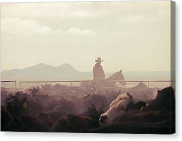 Cowboy Dawn Canvas Print by Todd Klassy