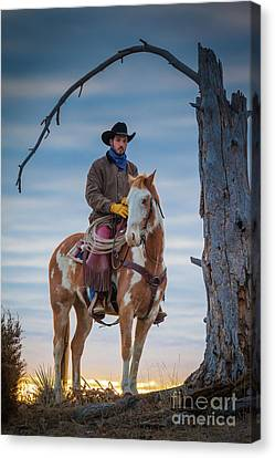 Cowboy Under Tree Canvas Print by Inge Johnsson