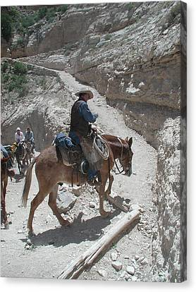 Canvas Print featuring the photograph Cowboys In The Canyon by Nancy Taylor
