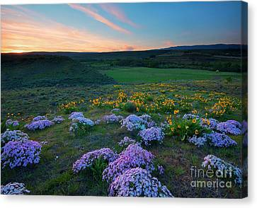 Cowiche Sunset Canvas Print by Mike Dawson