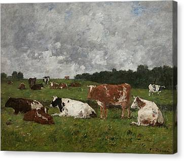 Cows At The Pasture Canvas Print by Eugene Louis Boudin