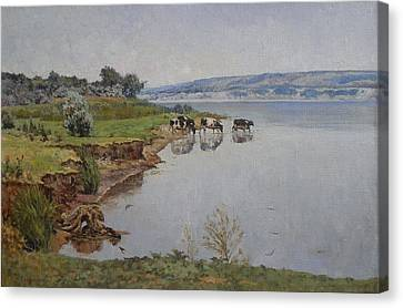Cows On The River Volga Canvas Print by Andrey Soldatenko