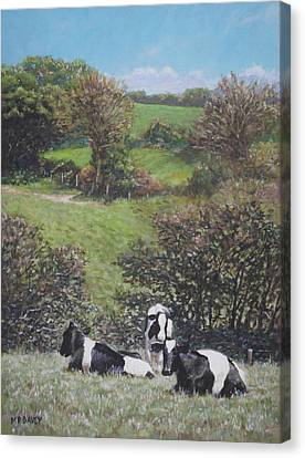 Canvas Print featuring the painting Cows Sitting By Hill Relaxing by Martin Davey