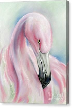 Coy Flamingo Canvas Print