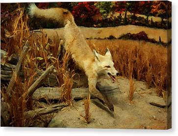 Canvas Print featuring the digital art Coyote  by Chris Flees