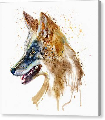Coyote Head Canvas Print by Marian Voicu