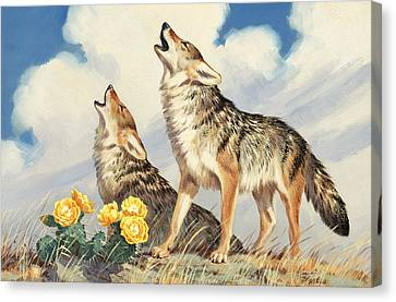 Coyotes Howl To The Setting Sun Canvas Print by Walter A. Weber