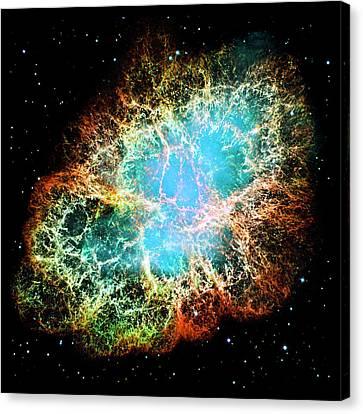 Crab Nebula Canvas Print by Weston Westmoreland
