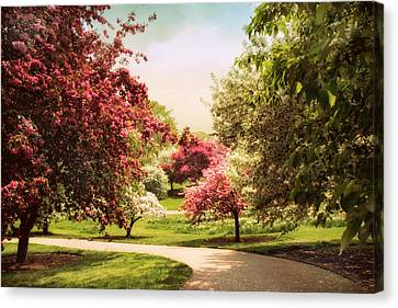 Crabapple Trees Canvas Print by Jessica Jenney