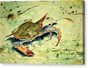 Appleton Art Canvas Print - Crabby Appleton by Shirley Sykes Bracken
