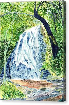 Crabtree Falls - Phantom Of The Blue Ridge Canvas Print by Joel Deutsch