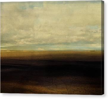 Cracked Desert Canvas Print