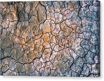 Cracked Mud II Canvas Print by Alexander Kunz