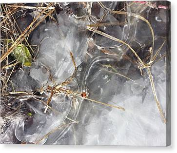 Snow Melt Canvas Print - Crackling Ice I by Joanne Smoley