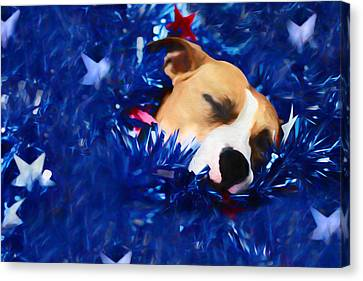 Cradled By A Blanket Of Stars And Stripes Canvas Print by Shelley Neff