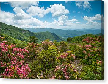 Craggy Gardens Blue Ridge Parkway Stunning Vista Canvas Print