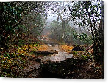 Canvas Print featuring the photograph Craggy Gardens by Jessica Brawley