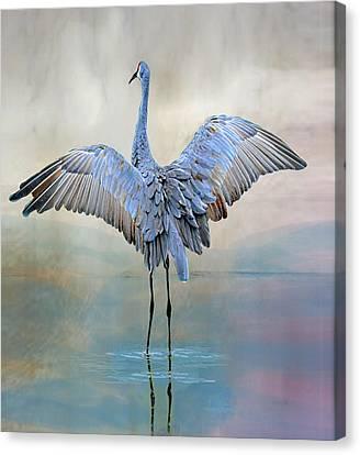 Crane Dance Canvas Print by Suzi Harr