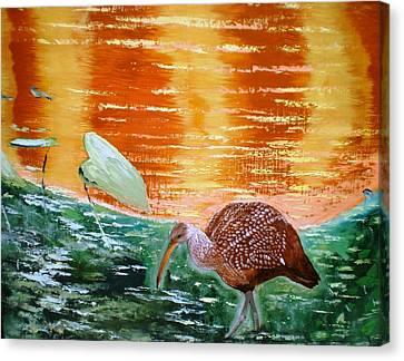 Crane Hunting Minnows Canvas Print by Francis Roberts ll