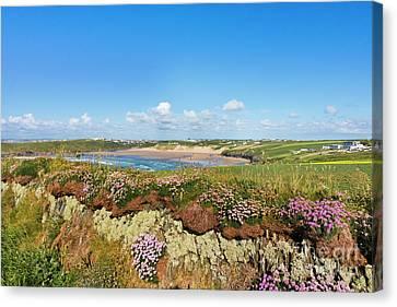 Crantock Cornwall Canvas Print by Terri Waters