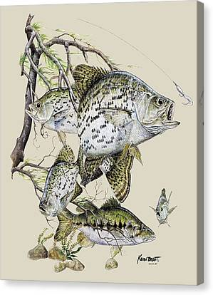 Crappie And Bass Canvas Print