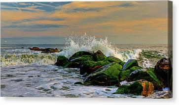 Crashing Waves Canvas Print by David Hahn