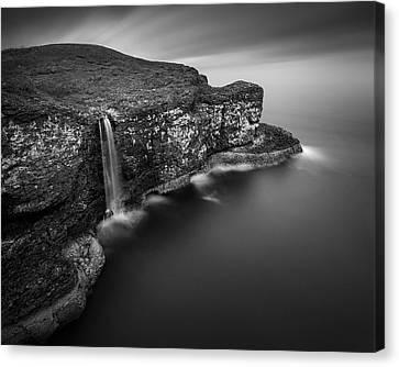 Crawton Cliffs Canvas Print by Dave Bowman