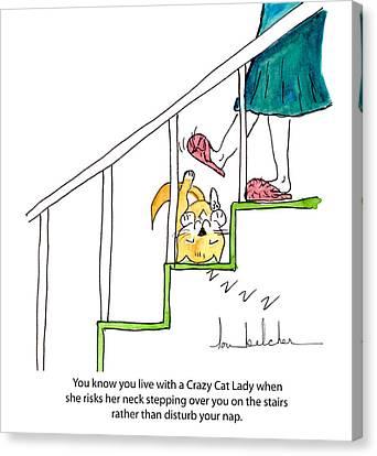 Crazy Cat Lady 0006 Canvas Print