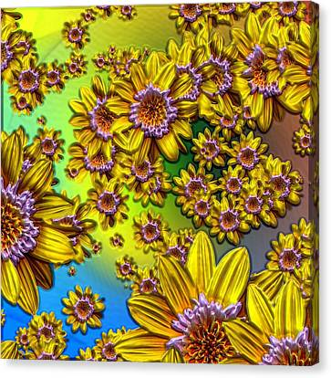 Crazy Daisies Canvas Print by Nick Kloepping