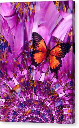 Crazy Flower Butterfly Canvas Print