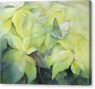 Cream Poinsettia With Butterfly Canvas Print by Karen Armitage