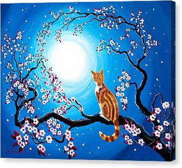 Creamsicle Kitten In Blue Moonlight Canvas Print by Laura Iverson