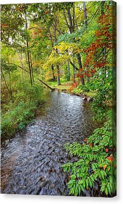 Creek Bend Canvas Print