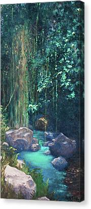 Creek Chincultik Canvas Print