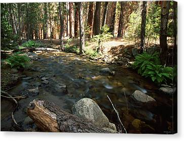 Creek Crossing Canvas Print by Soli Deo Gloria Wilderness And Wildlife Photography