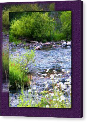 Canvas Print featuring the photograph Creek Daisys by Susan Kinney