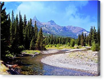 Creek In The Beartooths Canvas Print