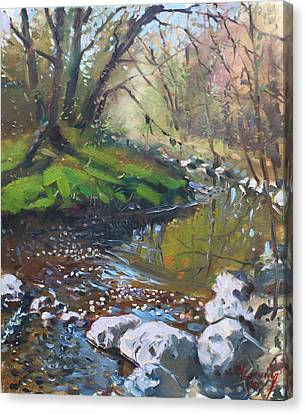 Lanscape Canvas Print - Creek In The Woods by Ylli Haruni
